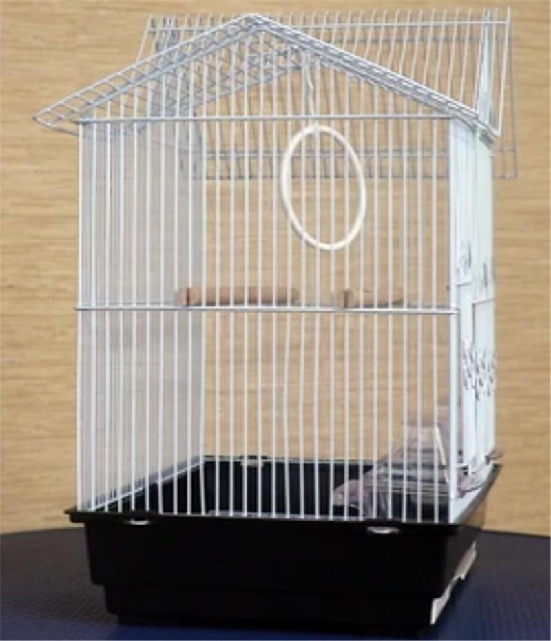 Metal Small Bird Cage YA040